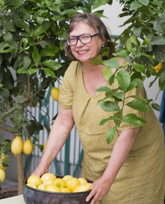 10 tips för att lyckas med citrus