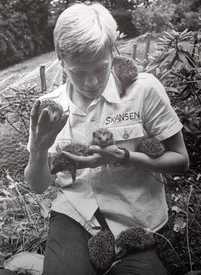 Jonas Wahlström hade ett zoo i pojkrummet