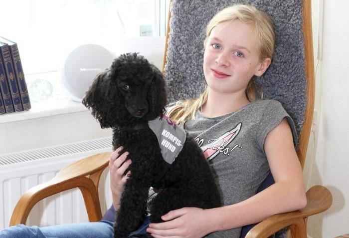 Kompishunden öppnar upp autistiska Lovas värld