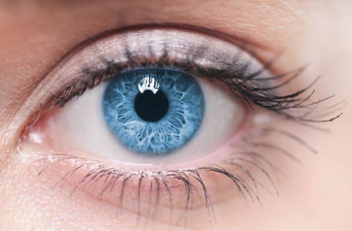 fakta om ögon