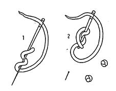 fransk knut