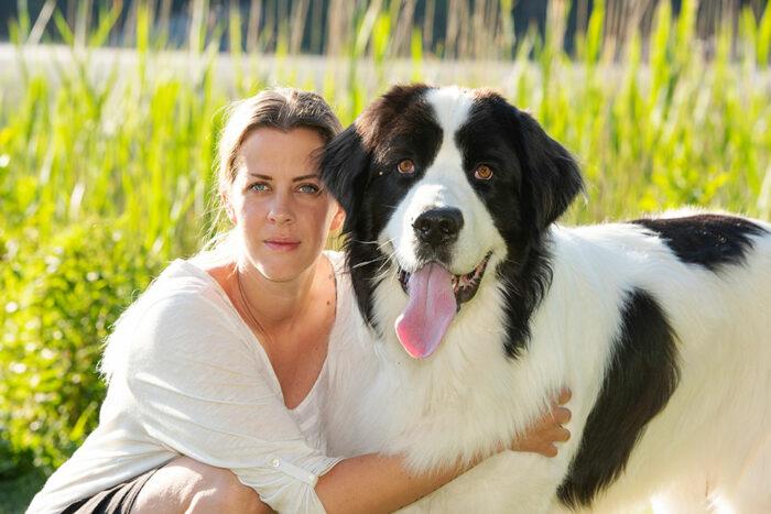 Hundar utbildas for att hjalpa