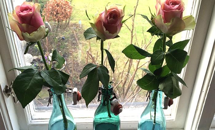 tre rosor