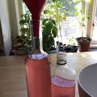 rosensaft