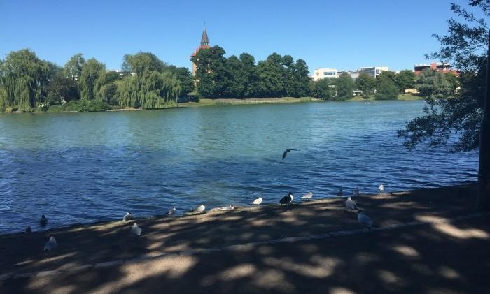 Pildammsparken, Malmö, ormar, damm