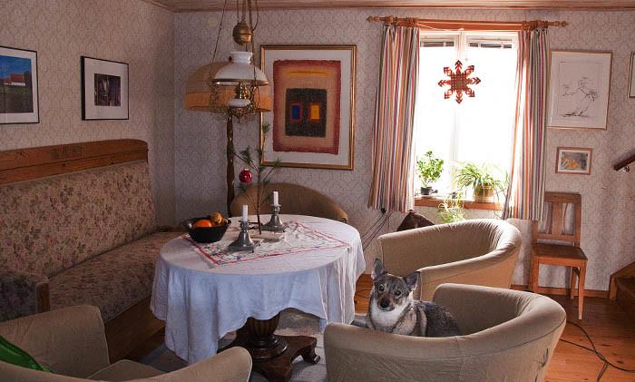 Du ser själv. Julduk på bordet och en fin bordsgran från Amerika. I fönstret hänger en stilig adventsstjärna och lyser på kvällarna. Allt ska bort, utom den vackra västgötaspetsen Vaira i fåtöljen. Jag vill bara påpeka att det är dammsugarsladden som ligger på golvet. Nu ska här fejas!