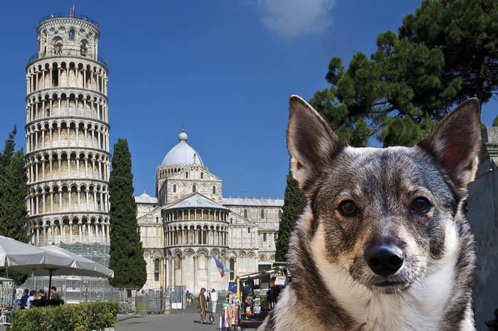Klart att du ska ha kända turistmål, som alla känner till. Lutande tornet i Pisa är ett bra exempel på en turistfälla av stora mått. Tittar du riktigt noga, så ser du en västgötaspets till på bilden. Det är Sverker.