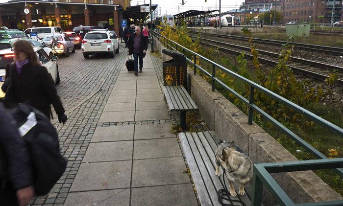 Att stå på en bänk i 20 minuter vid Linköpings central och vänta på ett försenat tåg, som har med sig min Agnes, kan kanske vara en positiv upplevelse utan motstycke för somliga. Jag tillhör dessvärre inte den minoritetsgruppen.