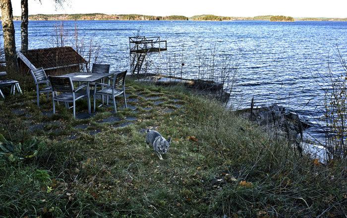 Min Agnes uteplats låg i skugga när bilden togs, men på Östergötland skiner solen. Det är fusk, anser jag. Alla stolar och bordet finns dock där. Vi kanske vrider lite på dem i morgon, för flyttas ska de ju.