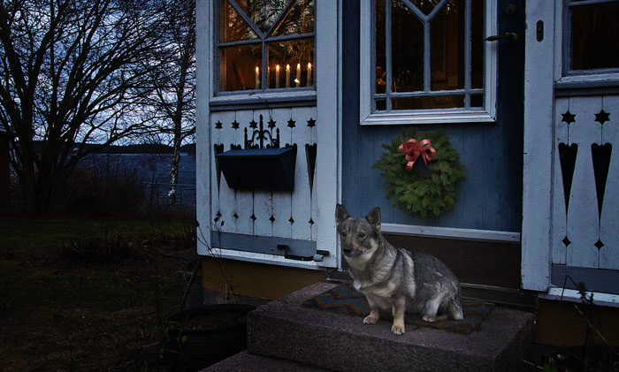 Detta är vad som möter besökarna hos mig. En vacker julkrans på dörren, tillverkad av Bitte och Åke, och en adventsstake i fönstret. Visst är det fint?