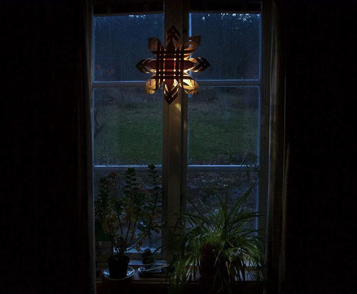 Mot vägen ser det ut så här från advent och till ett tag efter påsk. Ampelliljan i fönstret är väldigt viktig. Min Per plockade de ursprungliga skotten från en förvildad planta i Jugoslavien 1984. Min David plockade en sköldpadda.