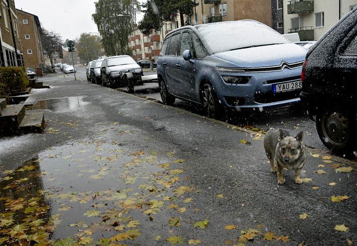 Detta är säkert första gången som det snöar på min bil. Jag tror att den längtar till sydligare trakter (=Tranås), så den slipper frysa. Dessutom är den kanske blyg, så den inte vill vara parkerad bland så många andra främmande bilar.