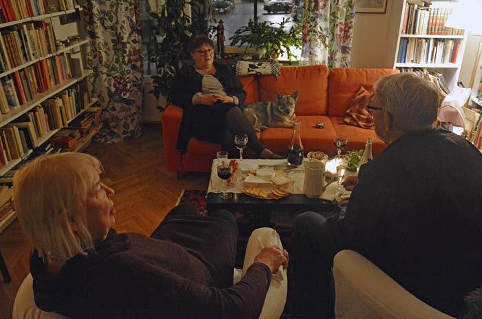 Här ser du alla som var där (utom min husse). I soffan sitter Janina, fd lärare, och Vaira, president. I fåtöljer med ryggen åt kameran sitter det äkta paret Britt, fd lärare och Gunnar, fd reklamman. Som du ser är alla före detta, utom jag.