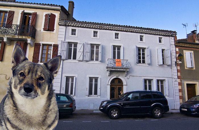 Visst vore väl det här huset ett stilenligt presidentpalats för mig? Det är visserligen bara sex rum och kök, men min husse har sagt att rummen är större än i mitt hus jag bor i nu. Min husse och jag skulle bara bo på undervåningen, så får resten vara gästrum. Gäster är roligt. (Bilden är en fuskbild. Jag har inte varit där.)