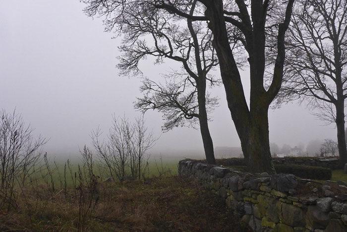 Vädret var vackert, men inte trevligt. Dimma och regn är bara tjusigt att titta på, inte att vara i. Så här såg det ut när vi kom till Heda kyrka.