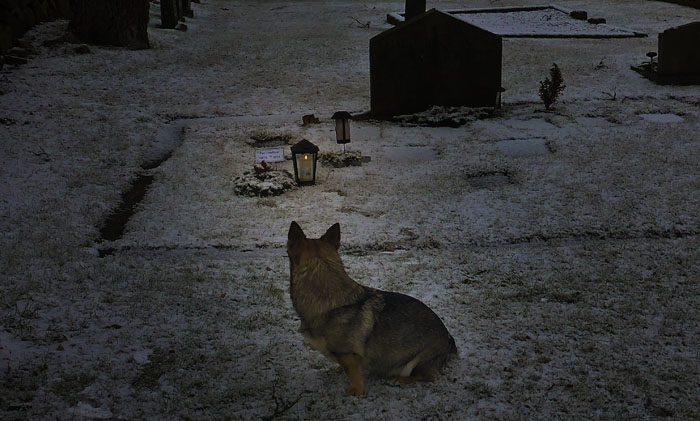Ett ljus lyser upp lite på min Pers grav och det kanske får oss att minnas.