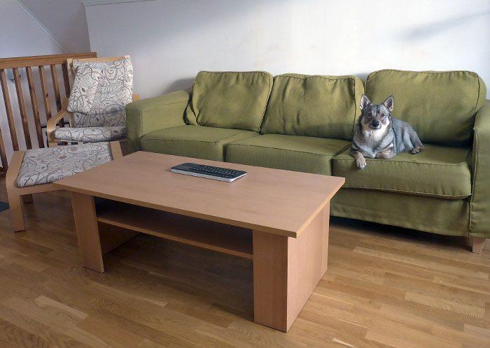 Min Pers tv-soffa är väldigt skön. Där har jag suttit tillsammans med min Per. Under soffan brukade den franska kattan Lucy gömma sig.