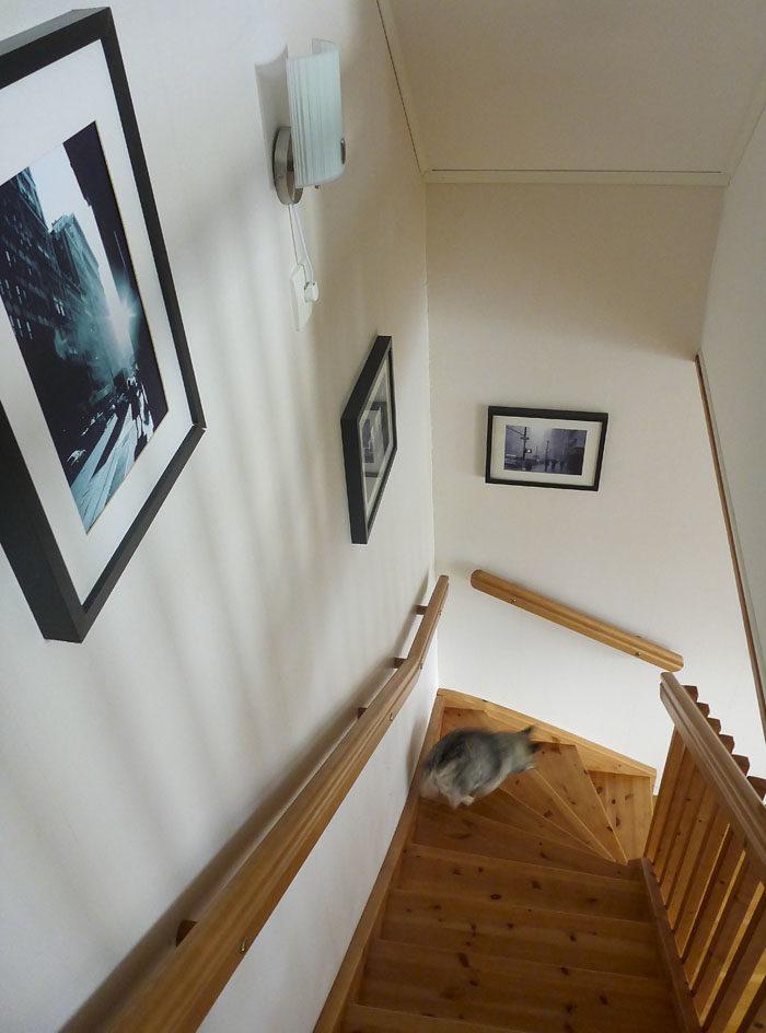 Trappan är avtorkad och blank och fin. Precis så ska det vara när de nyfikna kommer och tittar.