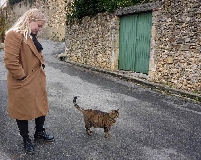 Nu igen!! En ny katt har hittat min Agnes. Vad är detta för stad? Vimlar det av katter? Jag undrar förstås om det finns några hundar. Svarta pudlar till exempel eller andra västgötaspetsar.
