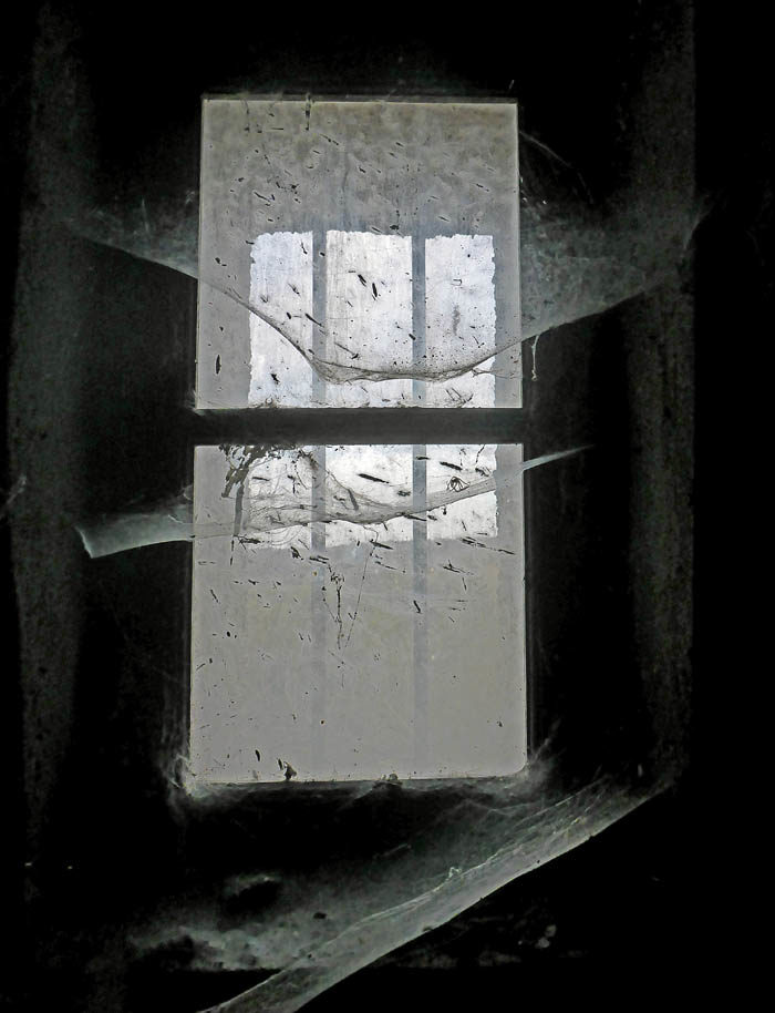 Att damma och fönsterputsa lite i mitt nya palats, skulle nog inte vara skadligt. Utom för spindlarna förstås. Där har min husse lite att ta tag i.