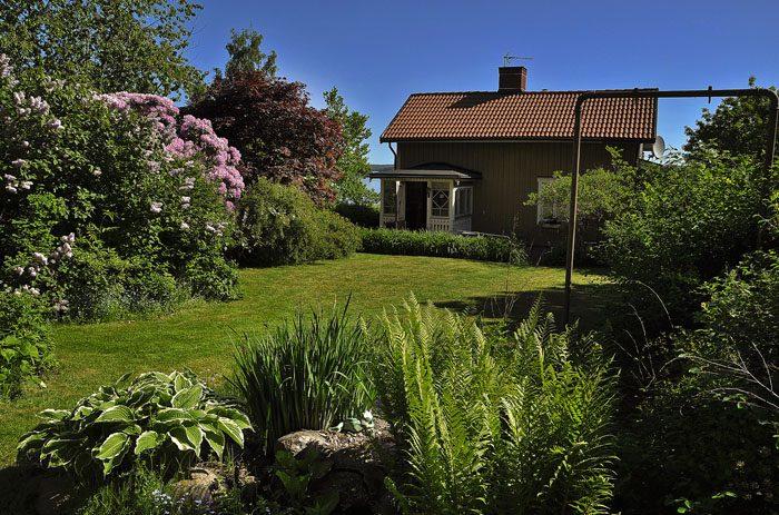 Det hade varit bättre att sälja huset i maj. Det här tror jag är mer säljande, än en kall blåsig och snöig tomt och ett ganska kallt hus (=min husse är snål).