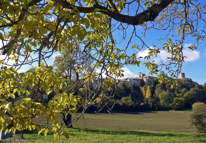 Detta är Aurignac, där 2 116 av de 1 314 invånarna har Väldigt mycket stort förtroende eller Mycket stort förtroende för mig. Det är en häpnadsväckande stor siffra. En sådan popularitet har aldrig tidigare uppmätts i världshistorien, sedan Heliga Birgittas dagar på 700-talet. Det är sanning.